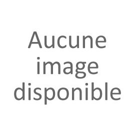 Chargeur Trottinette 54.6V 2A